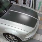 Mustang Cabrio (2)